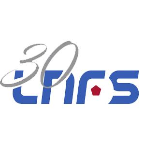 LNFS logo